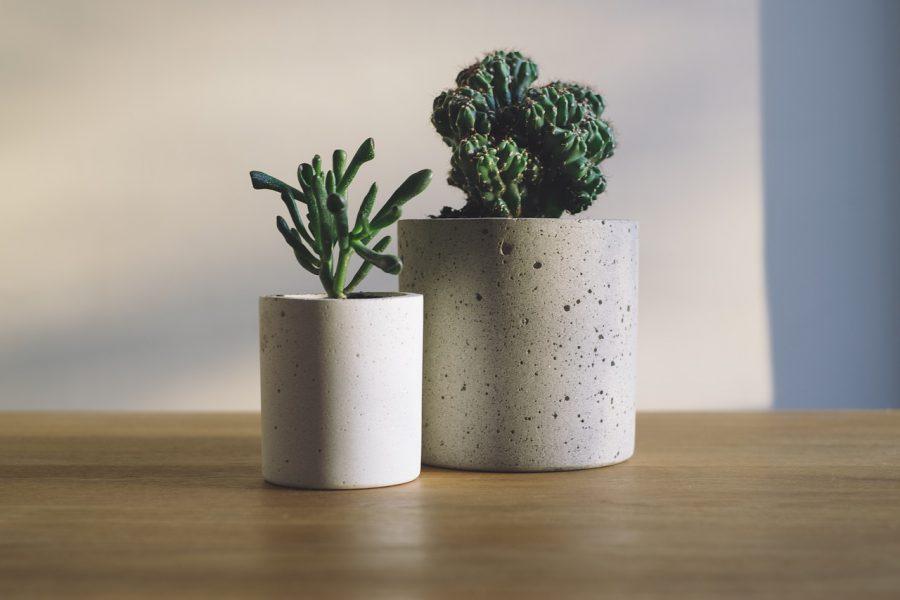 beton saksı